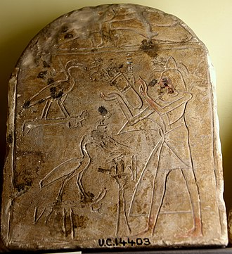 Thoth - Stela showing a male adorer standing before 2 Ibises of Thoth. Limestone, sunken relief. Early 19th Dynasty. From Egypt. The Petrie Museum of Egyptian Archaeology, London