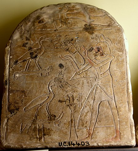Stela showing a male adorer standing before 2 Ibises of Thoth. Limestone, sunken relief. Early 19th Dynasty. From Egypt. The Petrie Museum of Egyptian Archaeology, London Stela showing a male adorer standing before 2 Ibises of Thoth. Limestone, sunken relief. Early 19th Dynasty. From Egypt. The Petrie Museum of Egyptian Archaeology, London.jpg