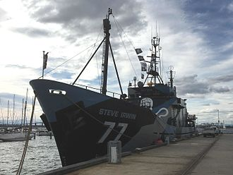 MY Steve Irwin - Sea Shepherd's Steve Irwin at Williamstown, Australia, August 2016