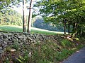 Stone Fence on Putman Rd - panoramio.jpg