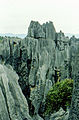Stone forest 1983-14.jpg