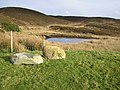 Stones at Beltrim - geograph.org.uk - 124719.jpg