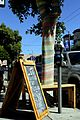 Straßenbaum in Presidio mit Regenbogenkleid umhüllt.JPG