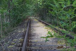 Remnants of the strategic railway towards the banks of the Elbe (connection to the West Elbe)