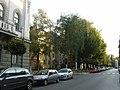 Street (1621177503).jpg