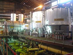 Sugar plant dsc09052.jpg