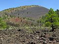 Sunset Crater Volcano National Monument-Arizona3.jpg