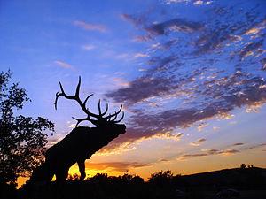 Elk Grove, California - Old Town in Elk Grove