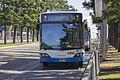 Sydney Buses (2086 ST) Custom Coaches 'CB60' Evo II Volvo B12BLE Euro 5 on Olympic Boulevard at Sydney Olympic Park.jpg