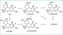 Tetrahydrocannabinol Wikipedia