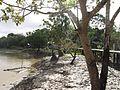 THE ITAQUAI RIVER - Palafitas da Comunidade São Rafael rio Itaquaí - panoramio (1).jpg