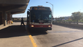 TTC Orion VII NG HEV 1280 on Route 96 Wilson.PNG