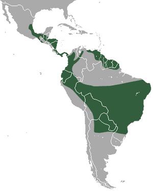 Tapeti - Image: Tapeti area