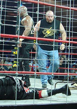 Bubba Ray Dudley - Team 3D, Brother Devon (left) and Brother Ray (right) in a steel cage.