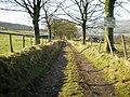 Teddy Carr Drive - geograph.org.uk - 1148237.jpg