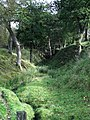 The Antonine Wall at Dullatur - geograph.org.uk - 1522990.jpg