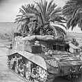 The British Army in Tunisia 1943 NA1168.jpg