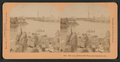The Lake, Golden Gate Park, San Francisco, Cal, from Robert N. Dennis collection of stereoscopic views.png