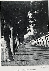 The Pyramid Road (1906) - TIMEA.jpg