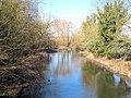 The River Colne upstream of Iver Lane bridge - geograph.org.uk - 1754519.jpg