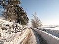 The minor road between Allendale and Sinderhope in the snow (2) - geograph.org.uk - 1670631.jpg