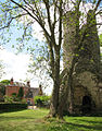 The ruin of St Mary's church - view past the tower - geograph.org.uk - 1284088.jpg