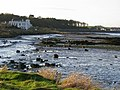 The shoreline near Lisnevin - geograph.org.uk - 703093.jpg