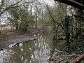 Throop Mill, mill stream - geograph.org.uk - 1180720.jpg
