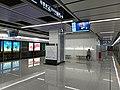 TongCyun Zaam Platform.jpg