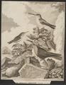 Topaza mellivora - 1700-1880 - Print - Iconographia Zoologica - Special Collections University of Amsterdam - UBA01 IZ19100247.tif