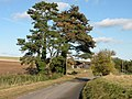 Trees and an old barn on the road to Hildersham - geograph.org.uk - 1026770.jpg