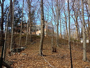 Libby Holman - The Treetops Mansion viewed from Treetops State Park.