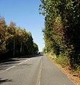 Tregwilym Road, Rogerstone - geograph.org.uk - 1607856.jpg