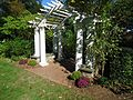 Trellis with plants in New Jersey.jpg