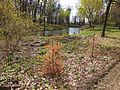 Turbiv park 123.jpg