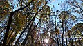 Twin Lakes Fall Hike (15105426374).jpg