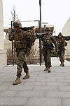 U.S. & Romanian Forces Conduct Bilateral Training 150227-M-XZ244-004.jpg