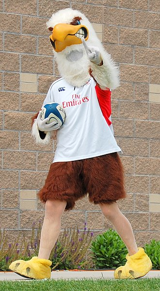 United States national rugby union team - The U.S. Eagle mascot during 2010 Churchill Cup.
