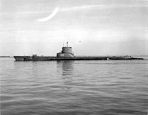 USS Sea Cat (SS-399)