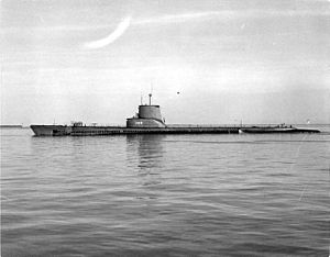 Sea Cat (SS-399), port side view, 1952.