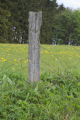 Ulrichstein Feldkruecken Am Melgershain NR 162171 Fence Post W.png