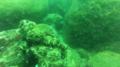 UnderwaterKoneswaramstatuesruins 02.png