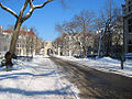 University of Chicago Campus Winter.jpg