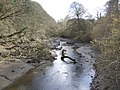 Up the creek - geograph.org.uk - 418378.jpg