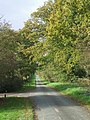 Upper Avenue - the tradesmen's alternative route - geograph.org.uk - 276961.jpg