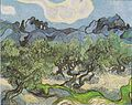 "Van Gogh - Olivenbäume mit ""Les Alpilles"" im Hintergrund.jpeg"