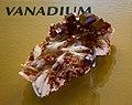 Vanadium - Cleveland Museum of Natural History - 2014-12-26 (20884738019).jpg