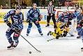 Vienna Capitals vs Fehervar AV19 -200.jpg