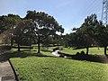View in Suwa Park in Omuta, Fukuoka.jpg
