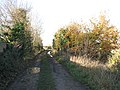 View north-west along dismantled trackbed of the Waveney Valley Line - geograph.org.uk - 1595294.jpg
